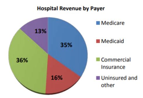 Pie graph depicting hospital revenue by payer
